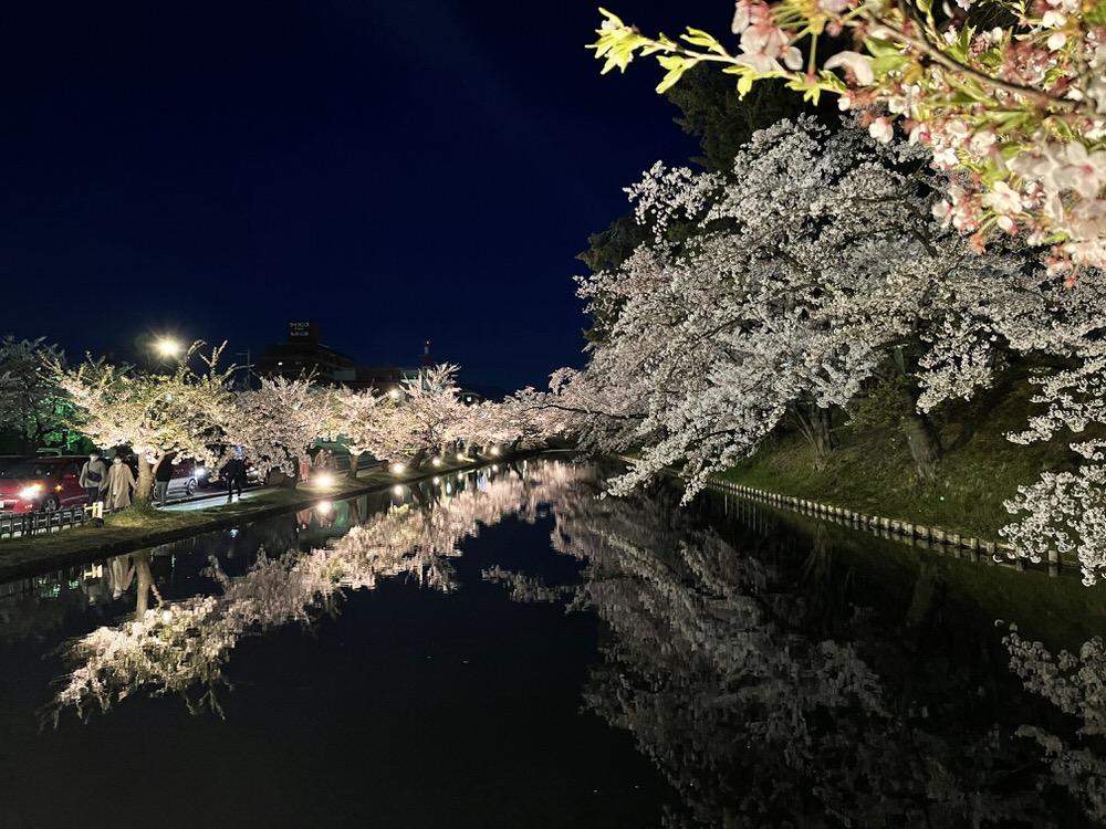 Hirosaki Castle Park Cherry Blossom Reflection Night Time